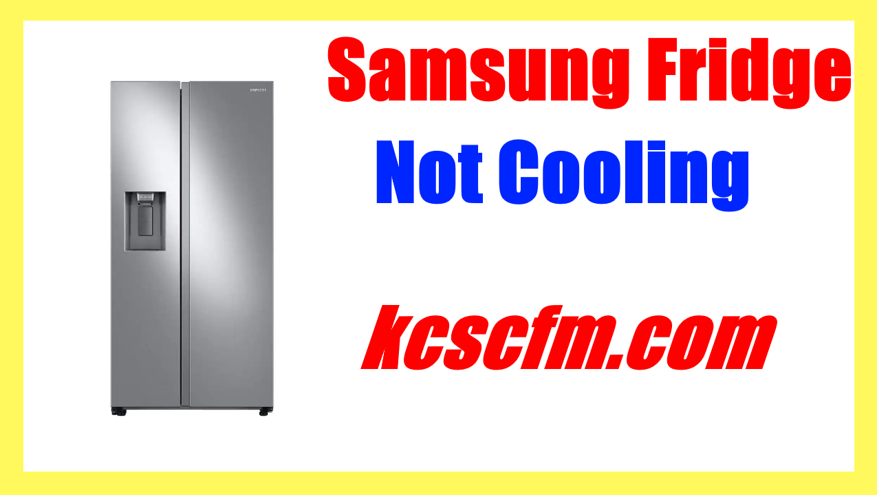 What Causes Samsung Fridge Not Cooling? Troubleshooting and Diagnosis