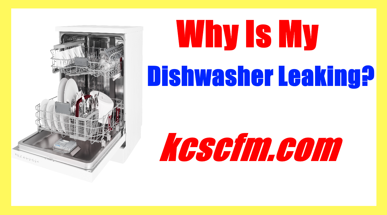 Why Is My Dishwasher Leaking? 8 Most Common Causes