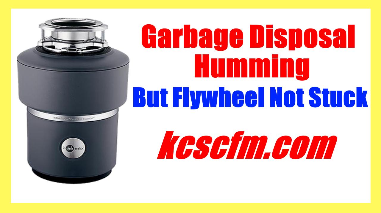 Garbage Disposal Humming But Flywheel Not Stuck