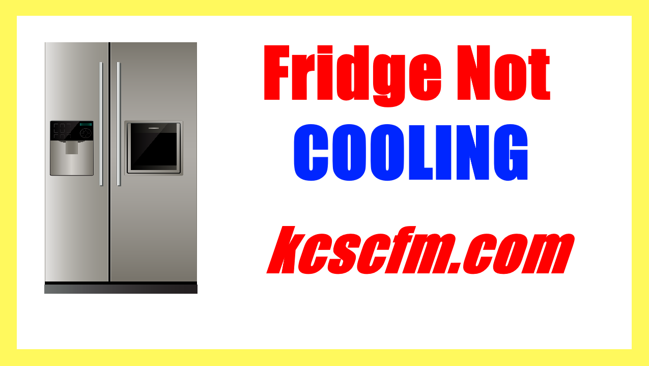 Fridge Not Cooling But Light is ON