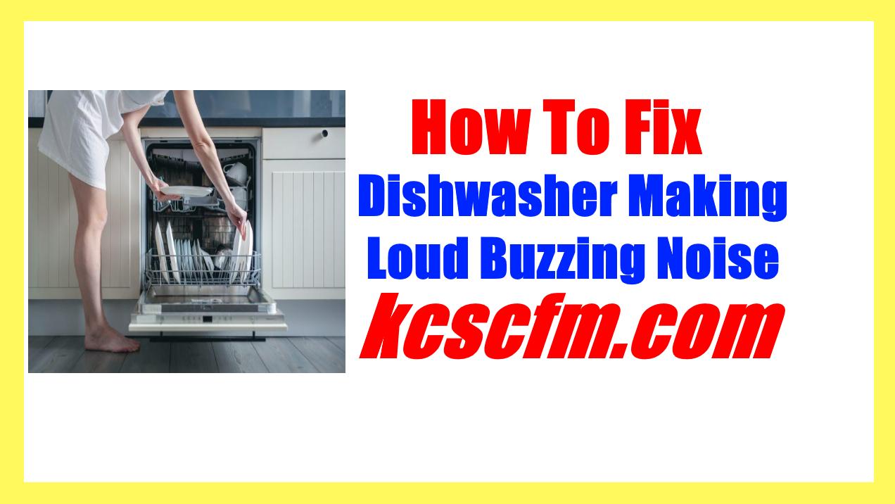Dishwasher Making Loud Buzzing Noise
